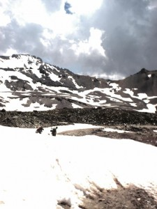Das Schneefeld stoppt uns